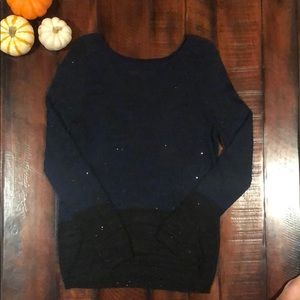 Loft sparkle sweater